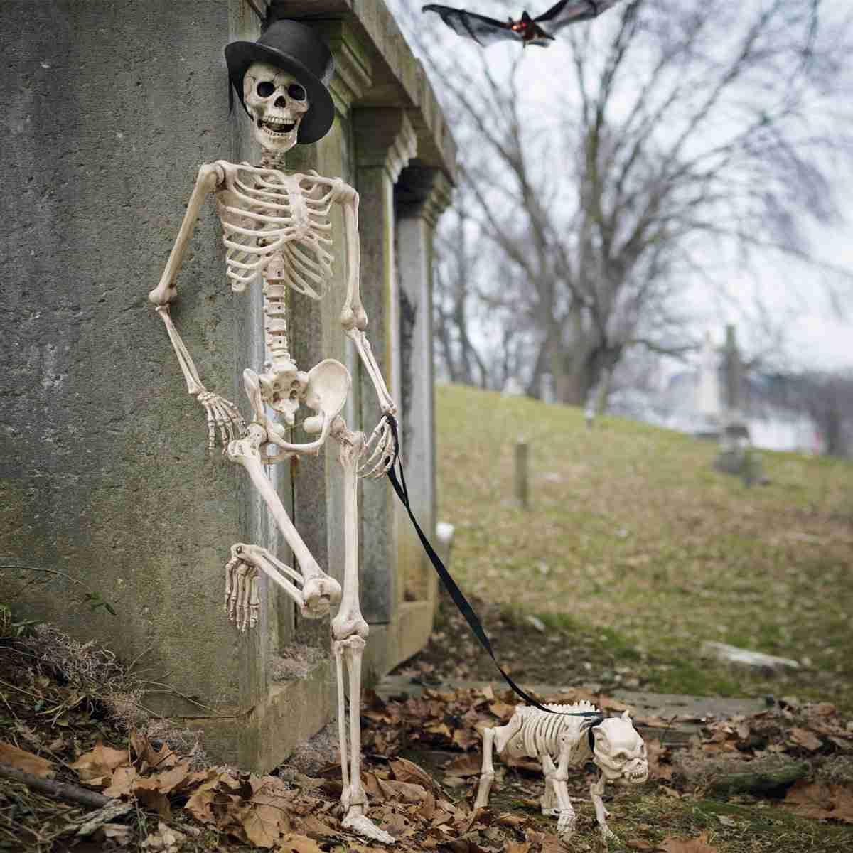 Рождеством, картинка смешной скелет