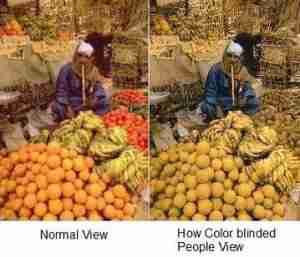 colorblind-view