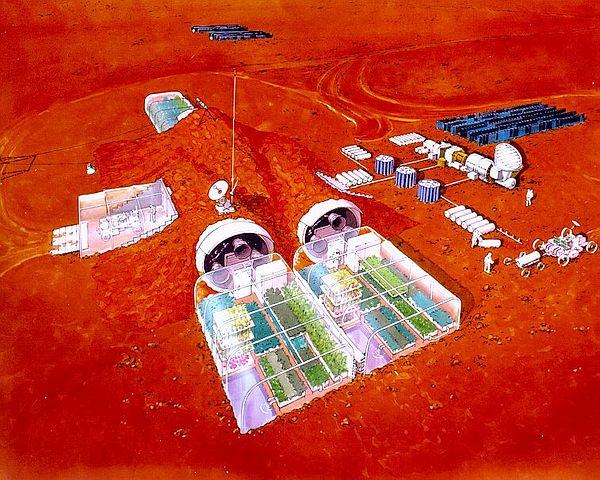 Mars'ta nasıl yaşayacak bitki 16