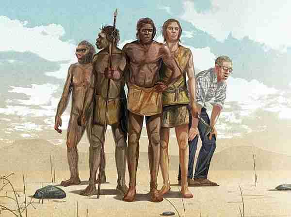 Hayat-evrim-evrimin-termodinamik-yaşam