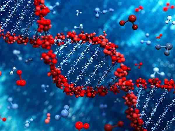 Epigenetik-genetik-dna-gen-kodlama