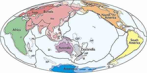 zelandiya-kıta-anakara-gondwana-yeni_zelanda