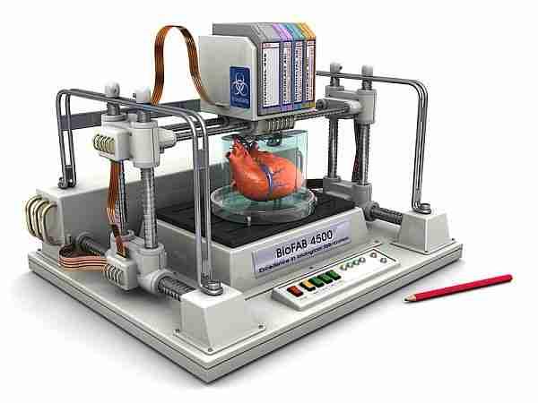 insan_kalbi-kalp-biyoprinter-3d_printer-york