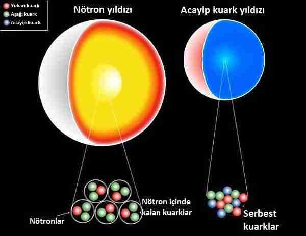 yarım_yıldızlar-kara_delik-nötron_yıldızı-kuark-lepton