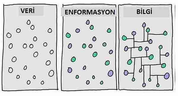 enformasyon-enformasyon_paradoksu-kara_delikler-paradoks