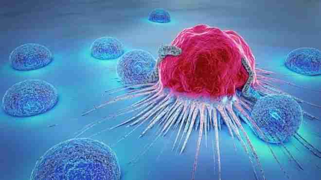Neden-hala-kansere-çare-bulamadık
