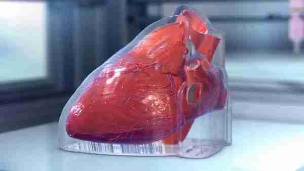 Artık-biyoprinterda-kalp-ve-pankreas-basacağız