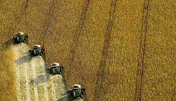 Küresel-ısınmayı-yavaşlatmak-için-eti-azaltın