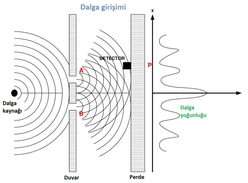 Evreni-holografik-kuantum-bilinç-mi-oluşturdu