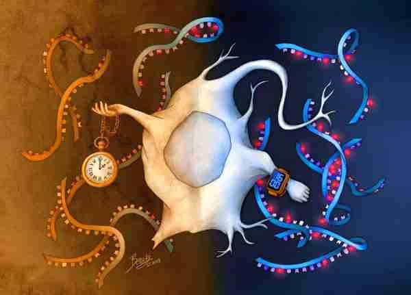 Virüsten-küçük-viroitler-yaşamın-kökeni-mi