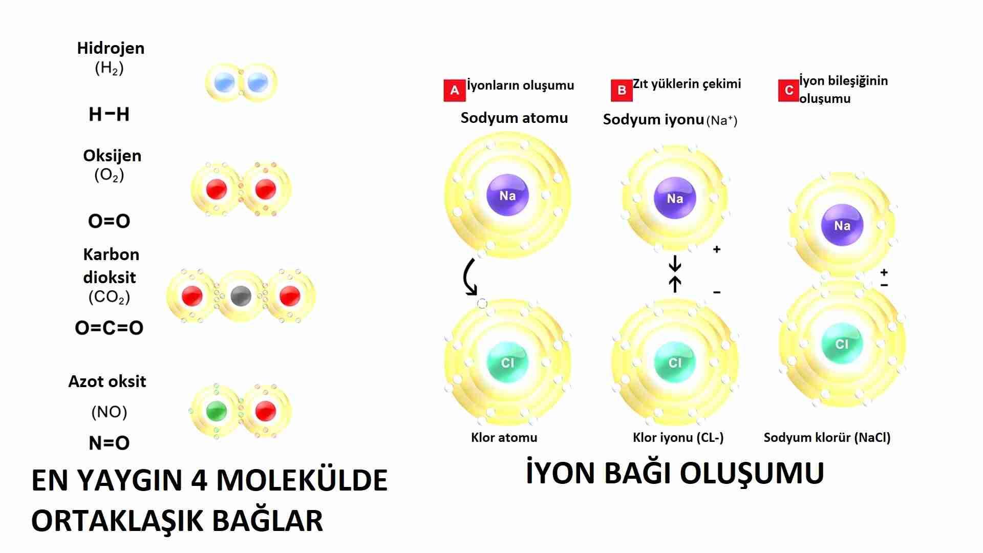 Kuantum-kimya-moleküller-nasıl-oluşuyor