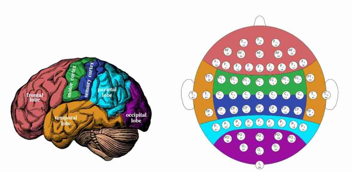 Beyin-bilgisayar-arayüzleri-nedir-ve-nasıl-çalışır