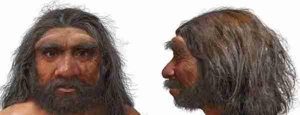 Ejderha-adam-insan-türünün-en-yakın-akrabası-mı