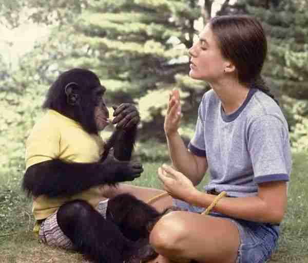 insanları-maymunlardan-ayıran-yüzde-4-dna-nedir