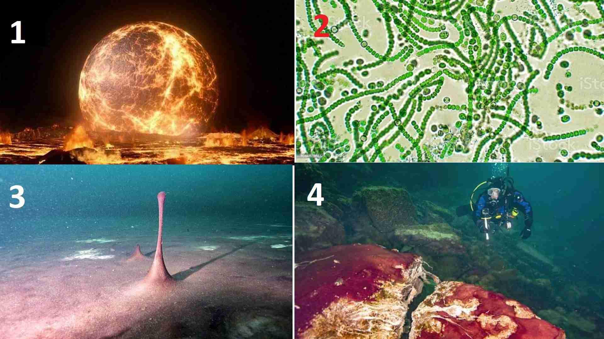 Oksijen-dünya-atmosferinde-nasıl-birikti